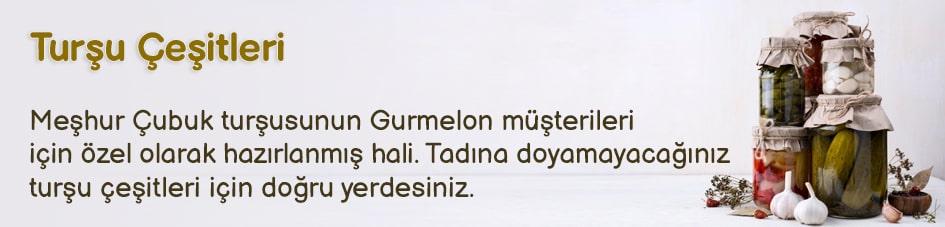 Turşu Çeşitleri - Gurmelon